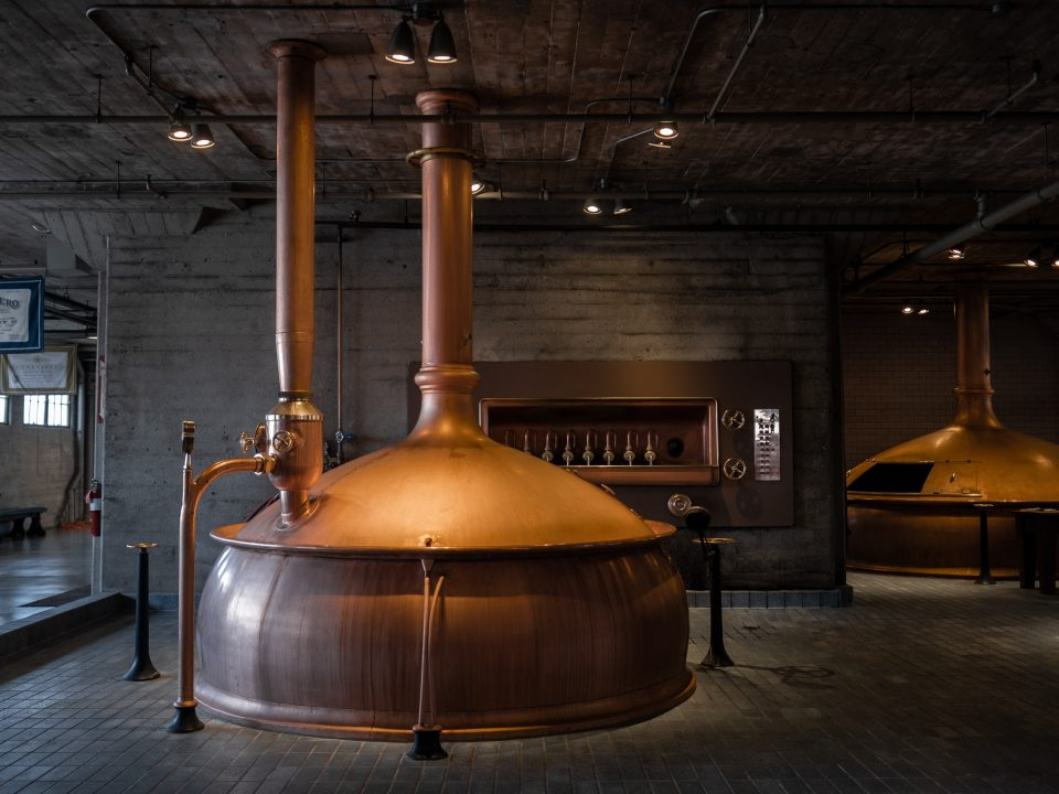 Príbeh piva: ilustrácia, pivovar.